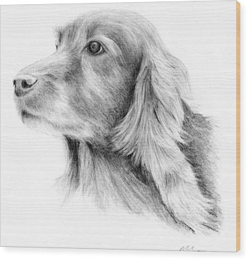 Red Setter Wood Print by Mary Mayes