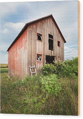 Wood Print featuring the photograph Red Shack On Tucker Rd - Vertical Composition by Gary Heller