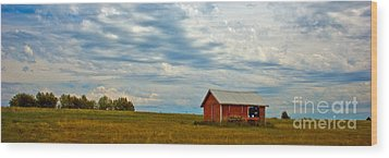 Red Shed Wood Print by Chuck Flewelling