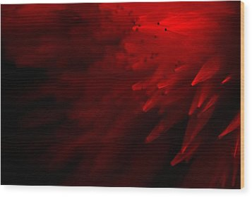 Wood Print featuring the photograph Red Skies by Dazzle Zazz