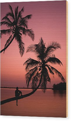 Red Sunset In The Tropics Wood Print