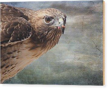 Red Tailed Hawk Wood Print by Barbara Manis