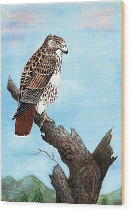 Wood Print featuring the painting Red Tailed Hawk by VLee Watson