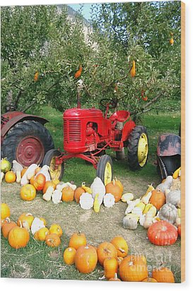 Wood Print featuring the photograph Red Tractor Under The Gourds by Joyce Gebauer