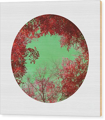 Red Trees Wood Print by Angela Bruno