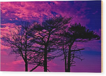 Wood Print featuring the photograph Red Trees by David Stine