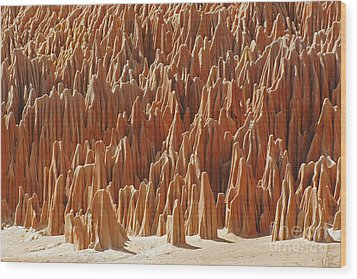Wood Print featuring the photograph red Tsingy Madagascar 1 by Rudi Prott