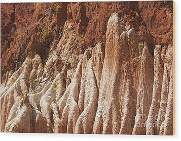 red Tsingy Madagascar Wood Print by Rudi Prott