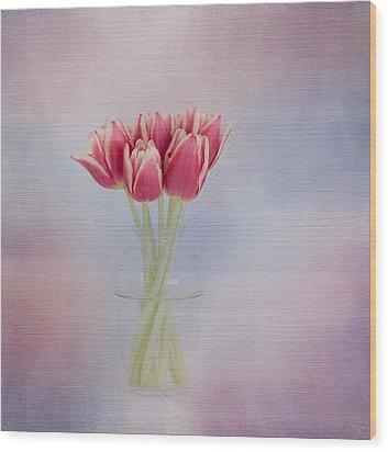 Red Tulip Still Life Wood Print by Kim Hojnacki