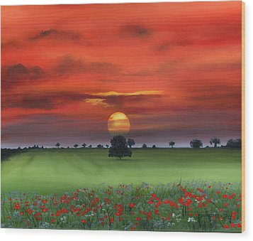 Red Tuscan Sunrise With Poppy Field Wood Print by Cecilia Brendel