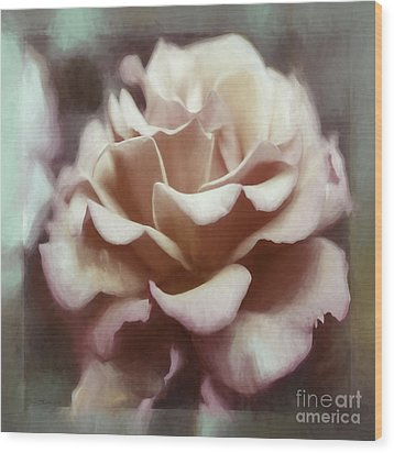Wood Print featuring the photograph Red White Rose by Jean OKeeffe Macro Abundance Art