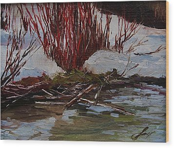 Red Willows Wood Print by Suzanne Tynes