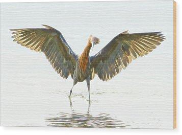 Wood Print featuring the digital art Reddish Egret 2 by William Horden