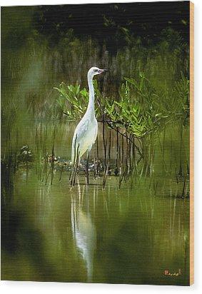 Wood Print featuring the photograph Reddish Egret 9c by Gerry Gantt