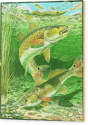 Redfish Haven In0018 Wood Print by Carey Chen