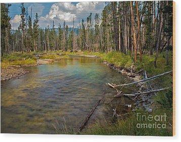 Redfish Lake Creek Wood Print by Robert Bales