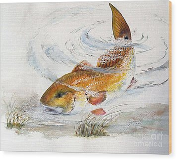 Redfish Wood Print by Sibby S