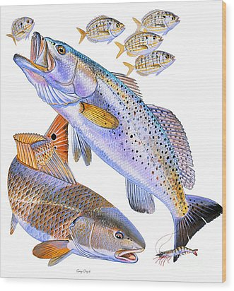 Redfish Trout Wood Print