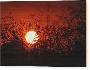 Wood Print featuring the photograph Redorange Sunset by Matt Harang