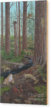 Redwood Forest Wood Print by Carlyn Iverson