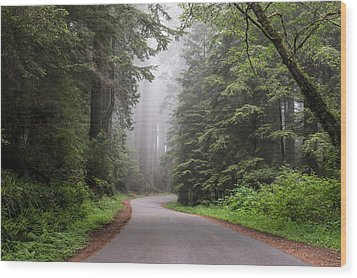 Redwoods In Northern California Wood Print by Carol M Highsmith