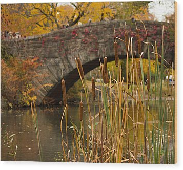 Wood Print featuring the photograph Reeds And Gapstow Bridge by Jose Oquendo