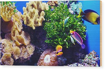 Wood Print featuring the photograph Reef Life by Brigitte Emme