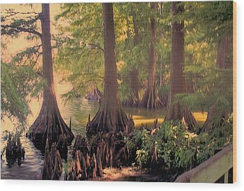 Reelfoot Lake At Sunset Wood Print by Bonnie Willis
