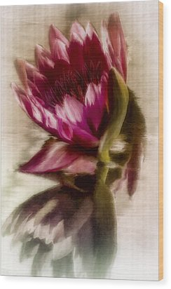 Reflected Waterlily Wood Print by Jill Balsam