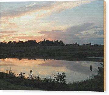 Reflecting Sky Wood Print by Linda Brown