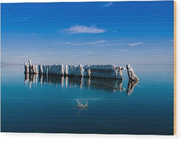 Reflection At Salton Sea Wood Print