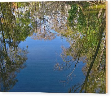 Reflection Wood Print by Denise Mazzocco