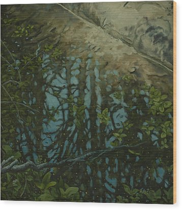 Reflection II Wood Print by Michael Marcotte
