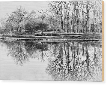 Reflection In Black And White Wood Print by Julie Palencia