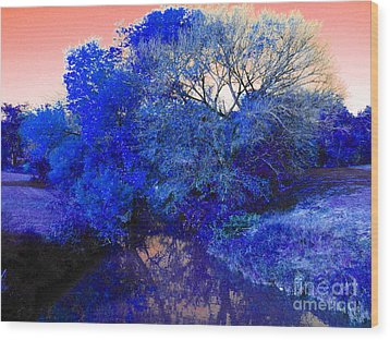 Reflection In Blue Wood Print by Diane Miller