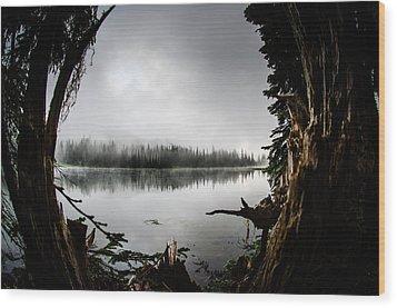 Reflection Lake Through The Stump Wood Print by Brian Xavier