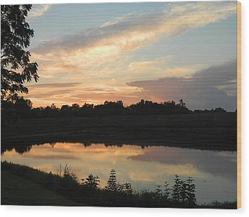 Reflection Wood Print by Linda Brown