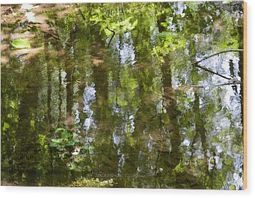 Reflection Of Woods Wood Print by Sonali Gangane