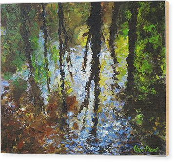Reflection Wood Print by Peter Plant