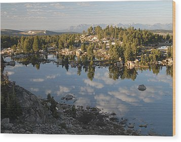 Reflection Pool Near Beartooth Wood Print by Larry Moloney