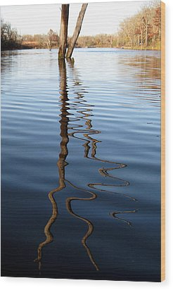 Reflections 1 Wood Print by Jamie Seul
