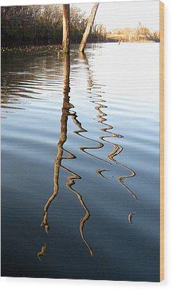 Reflections 2 Wood Print by Jamie Seul