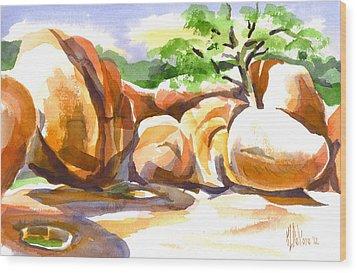Reflections At Elephant Rocks B Wood Print by Kip DeVore