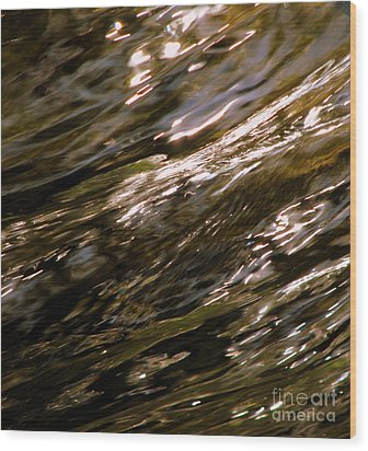 Reflections Wood Print by C Ray  Roth
