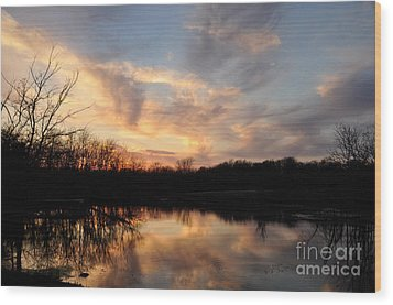 Wood Print featuring the photograph Reflections by Cheryl McClure