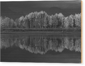 Reflections Wood Print by David Andersen