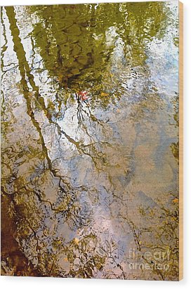 Reflections Wood Print by Delona Seserman