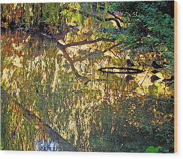 Reflections In Bayou Robert Wood Print