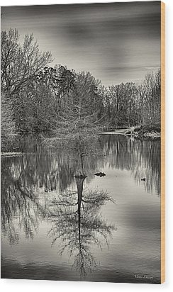 Wood Print featuring the photograph Reflections In Black And White by Yvonne Emerson AKA RavenSoul