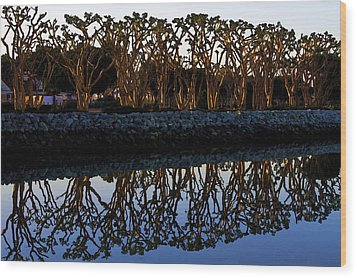 Wood Print featuring the photograph Reflections In First Light by Gary Holmes